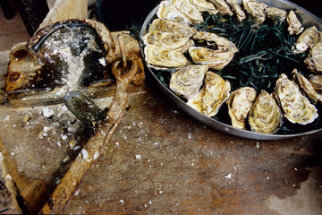 ostriche mollusco marino piatto tipico brettone normanno