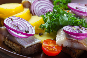 Sandwiches of rye bread with herring