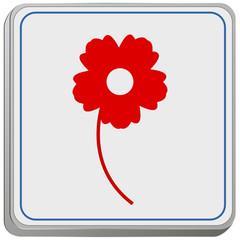 Blumen bestellen Online
