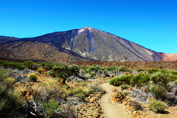 Desert near Teide volcano (Tenerife, Canarian Islands, Spain)