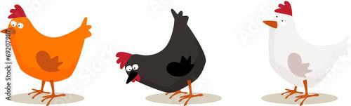 poules - 69207987
