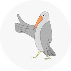 bird best