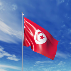 Waving  Tunisian flag