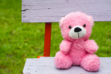 pink teddy bear on a vintage bench