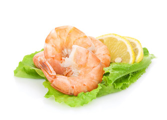 Cooked shrimps with lemon over salad leaves