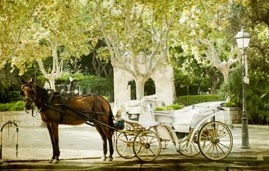 Tourist chariot in the old city of Palma de Mallorca