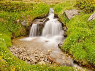Rapids on mountain stream in spring meadow of Alps. Cold misty a