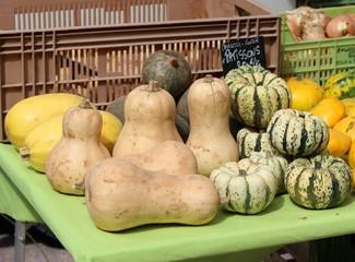 Courges et pâtissons au marché