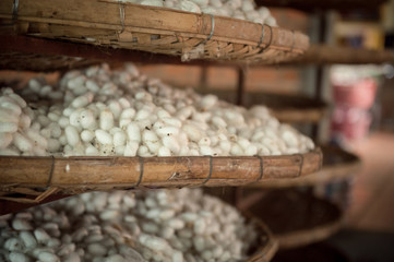 Baskets silkworm cocoons
