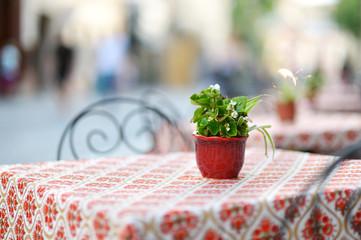 Beautiful outdoor restaurant in Vilnius
