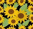 Dark seamless background with sunflower