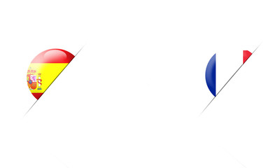Basketball World Cup 2014 Spain vs France