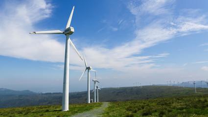 Wind farm with large wind turbines