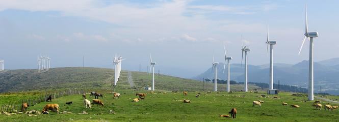 Wind farm panorama - cleantech