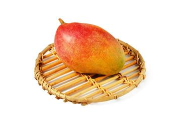 plammer mango