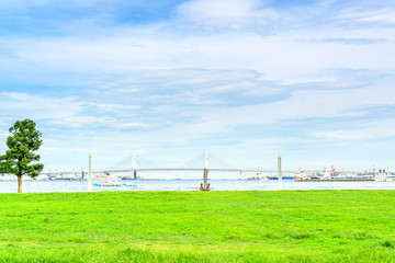 Landscape grass prospects the bay bridge.