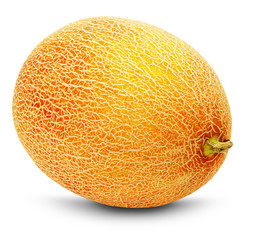 ripe yellow melon on the white background
