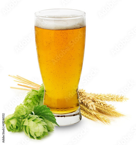 Glass of fresh Beer with green Hops and ears of barley isolated - 69246552