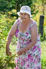 Joyful Caucasian elderly woman gardening, looking at camera