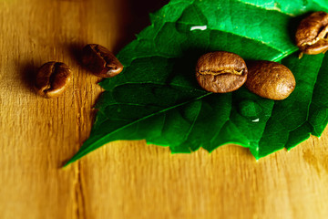 Beans of black coffee with fresh green leaves over wooden textur