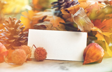 Autumn background with blank white card