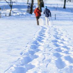 Spuren von Schneeschuh-Wanderern