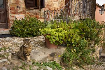 Vicolo di Castiglione d'Orcia in Toscana