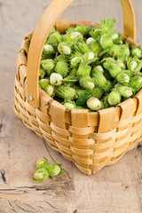 hazelnuts in a basket