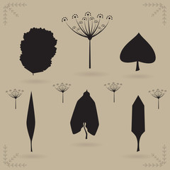 Herbarium of silhouette leaves. A vector illustration.