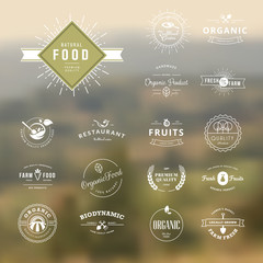 Set of vintage style elements for natural food and drink