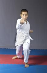 Karate kick in performing the athlete in karategi