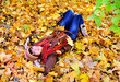Woman portrait lying on autumn leaves in park.