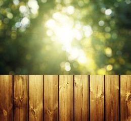 fence in forest
