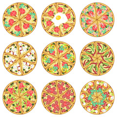 Nine isolated pizzas
