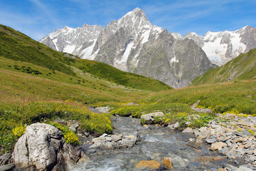 Mountain stream with Grand Jorasses glacier