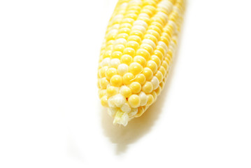 Single Organic Corn Cob Isolated on White