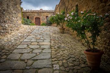 Vicolo con fiori di un antico borgo Toscano