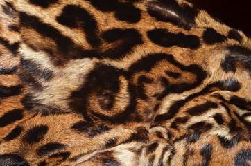 pelliccia di ocelot con immagine di cinghiale