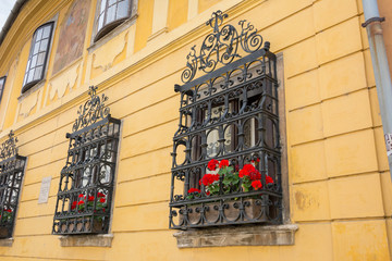 Ornate wrought iron window shutters with germanium plants and ye