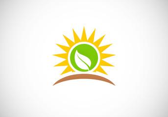 sun leaf ecology nature vector logo