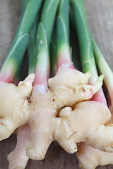 close - up fresh ginger root vegetable
