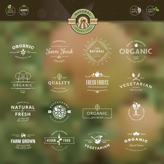 Vintage elements for labels and badges for organic food