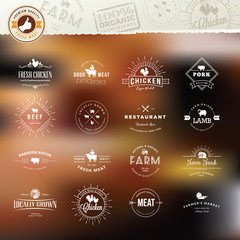 Set of vintage style elements for labels and badges for meat