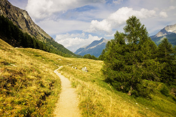 Walking around Sils Lake (Engadin Valley - Switzerland)