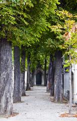 Passy Cemetery in Paris