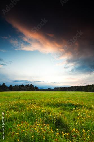 canvas print picture Abendwiese - Blick zum Brocken