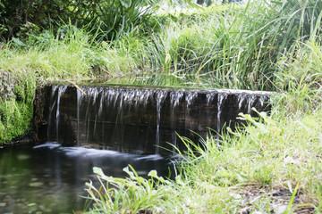 Wasserfall in der Natur
