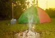 Постер, плакат: tent on green grassland