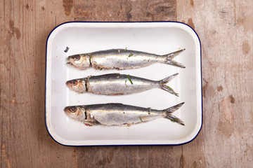 raw sardines in cooking tray