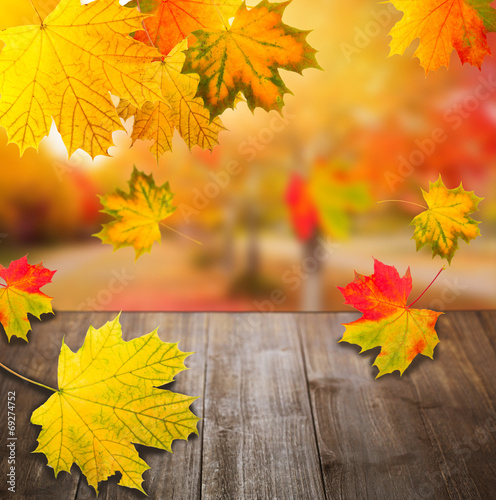 canvas print picture Natur im Herbst